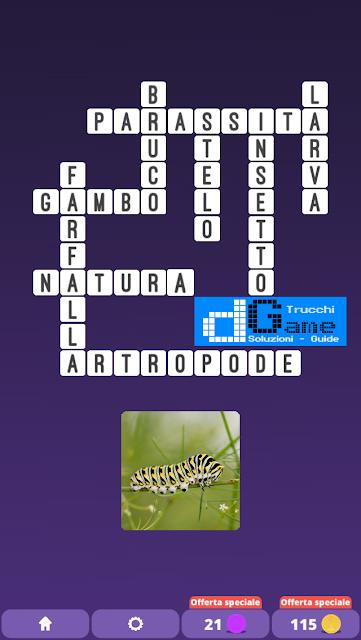 Soluzioni One Clue Crossword livello 16 schemi 7 (Cruciverba illustrato)  | Parole e foto