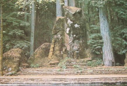 inside bohemian grove article