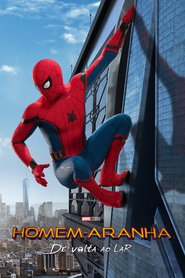 Homem-Aranha De Volta ao Lar 2017 - Dublado