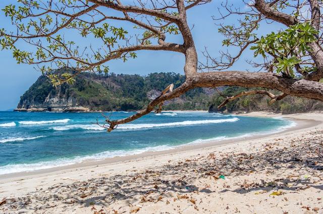 Pantai Ngalur