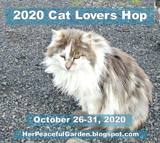 Cat Lovers Hop