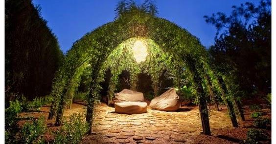 Living Willow Structure All Garden World