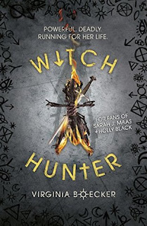 https://www.goodreads.com/book/show/25637444-witch-hunter