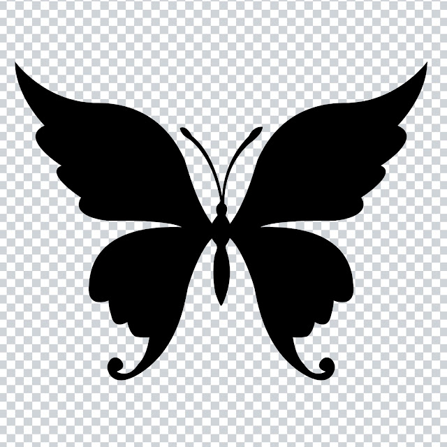 Free Download PNG - Buterfly Beautiful Shape