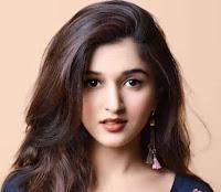 Biodata Nidhi Shah Pemeran Guddi serial india selamanya cinta sctv