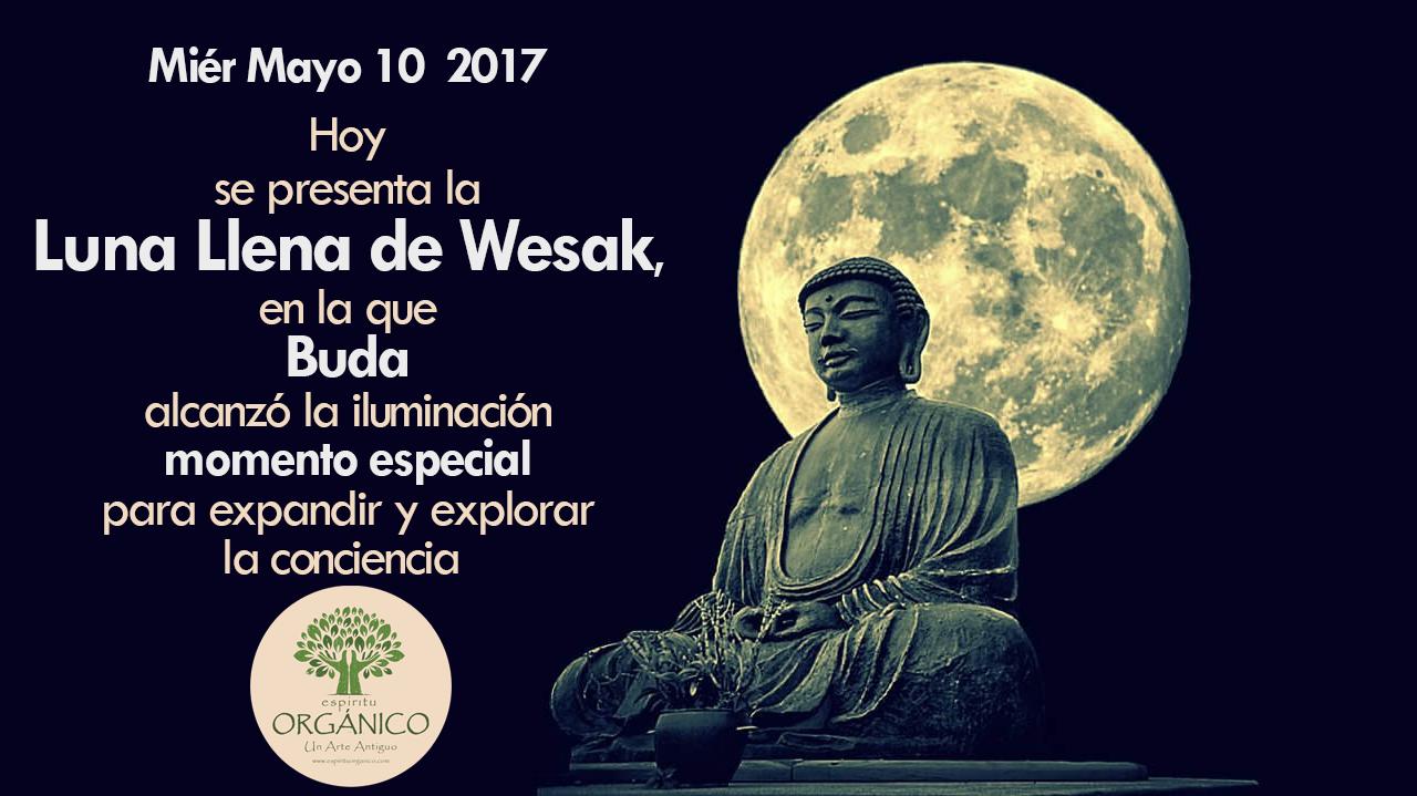 Luna llena de Wesak | Mié 10 de mayo 2017 | 🌝🙏 LA CONCIENCIA ESTÁ DE FIESTA