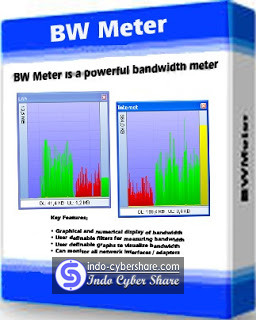 BWMeter Full Version