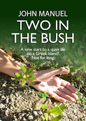 Latest novel - Two in the Bush...