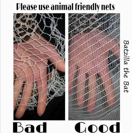 Netting | Bad netting - Good netting