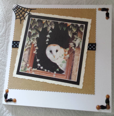 Owl in window Pollyanna Pickekring square card