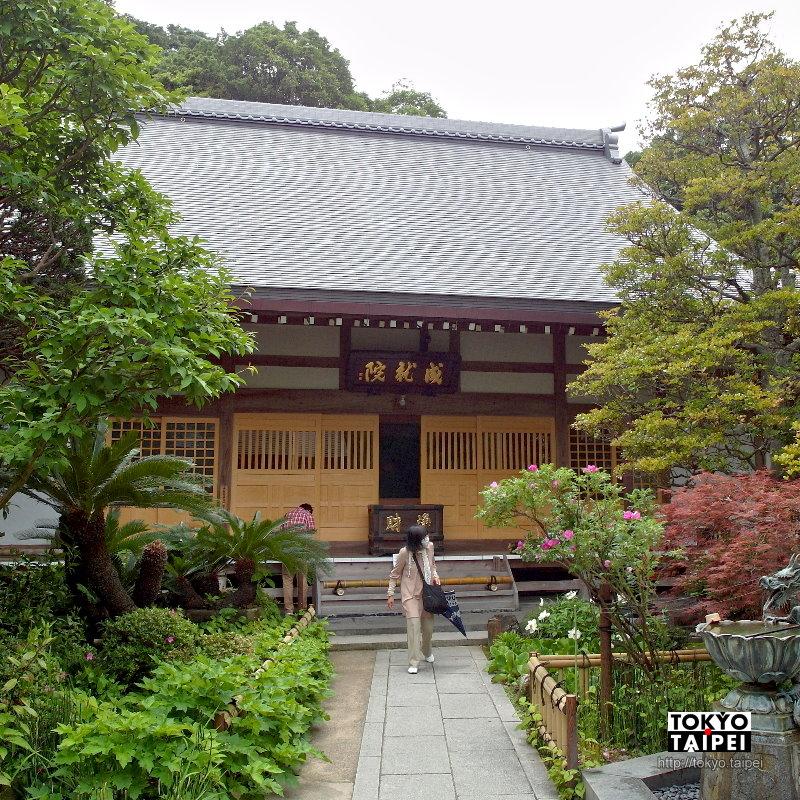 【成就院】參道比寺院還精彩 階梯上的海景和繡球花