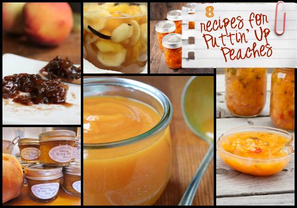 106 Peach Recipes to celebrate Eat A Peach Day