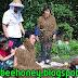 حمل كتاب تربية النحل مجاناً