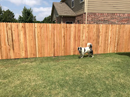 The new fence is up!