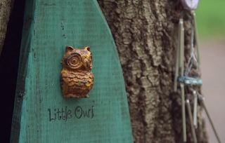 DragonsFaeriesElves&theUnseen : ✨Tiny little door found in a Tree ✨
