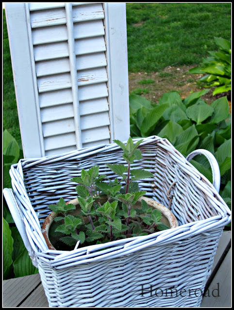 White basket and white shutter