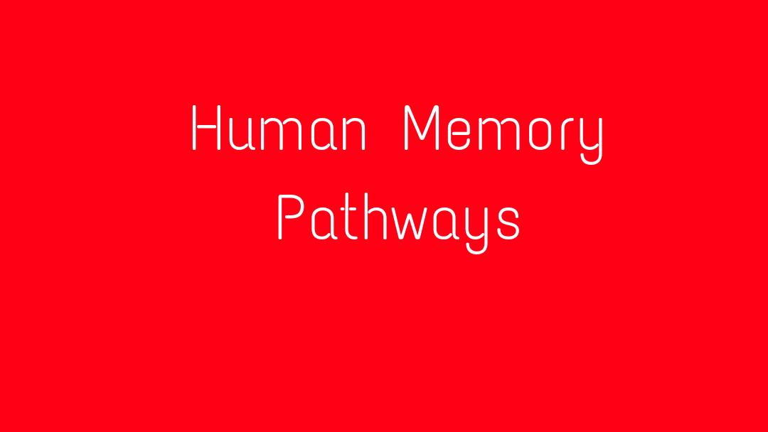Human Memory Pathways