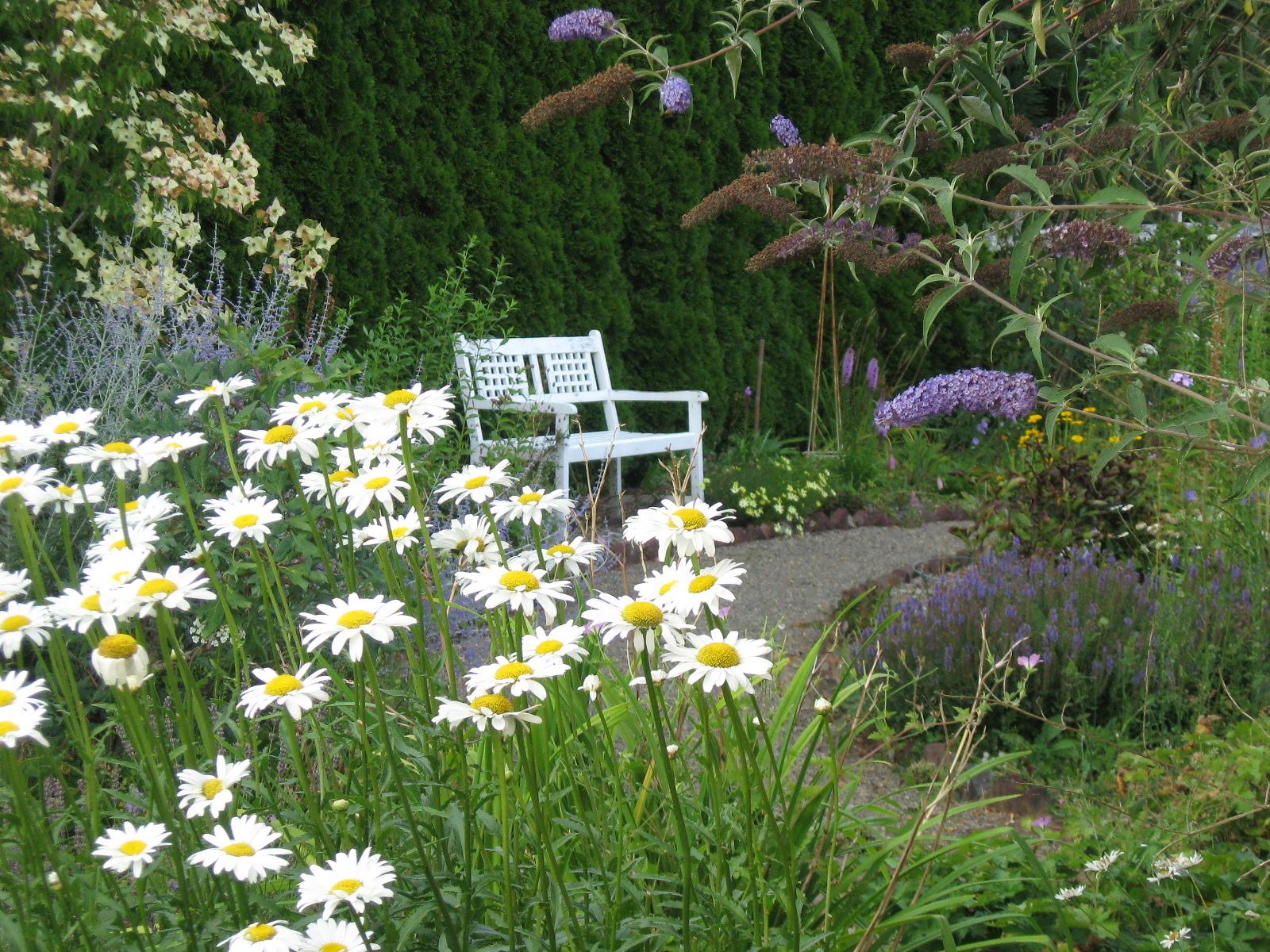 Saltbox Treasures Our Cottage Garden