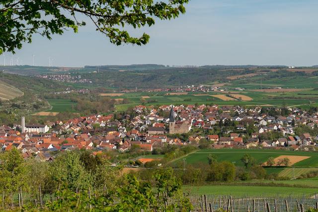 LT 17 Kur und Wein | Wandern in Bad Mergentheim | Liebliches Taubertal Weinlehrpfad Markelsheim | Wanderung um Bad Mergentheim 14
