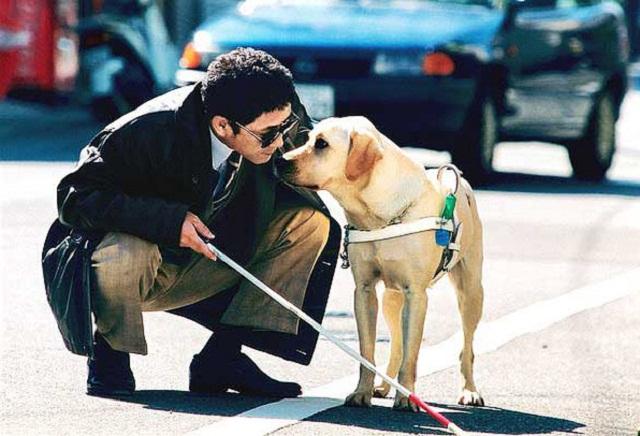Medicina veterinaria y zootecnia en la UPEA