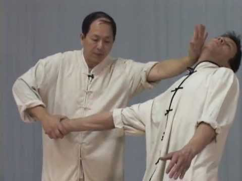Taijiquan Qinna - Demonstrated by Yang Jwing-Ming