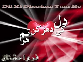 Dil Ki Dhadkan Ho Tum Episode 17 By Farwa Mushtaq