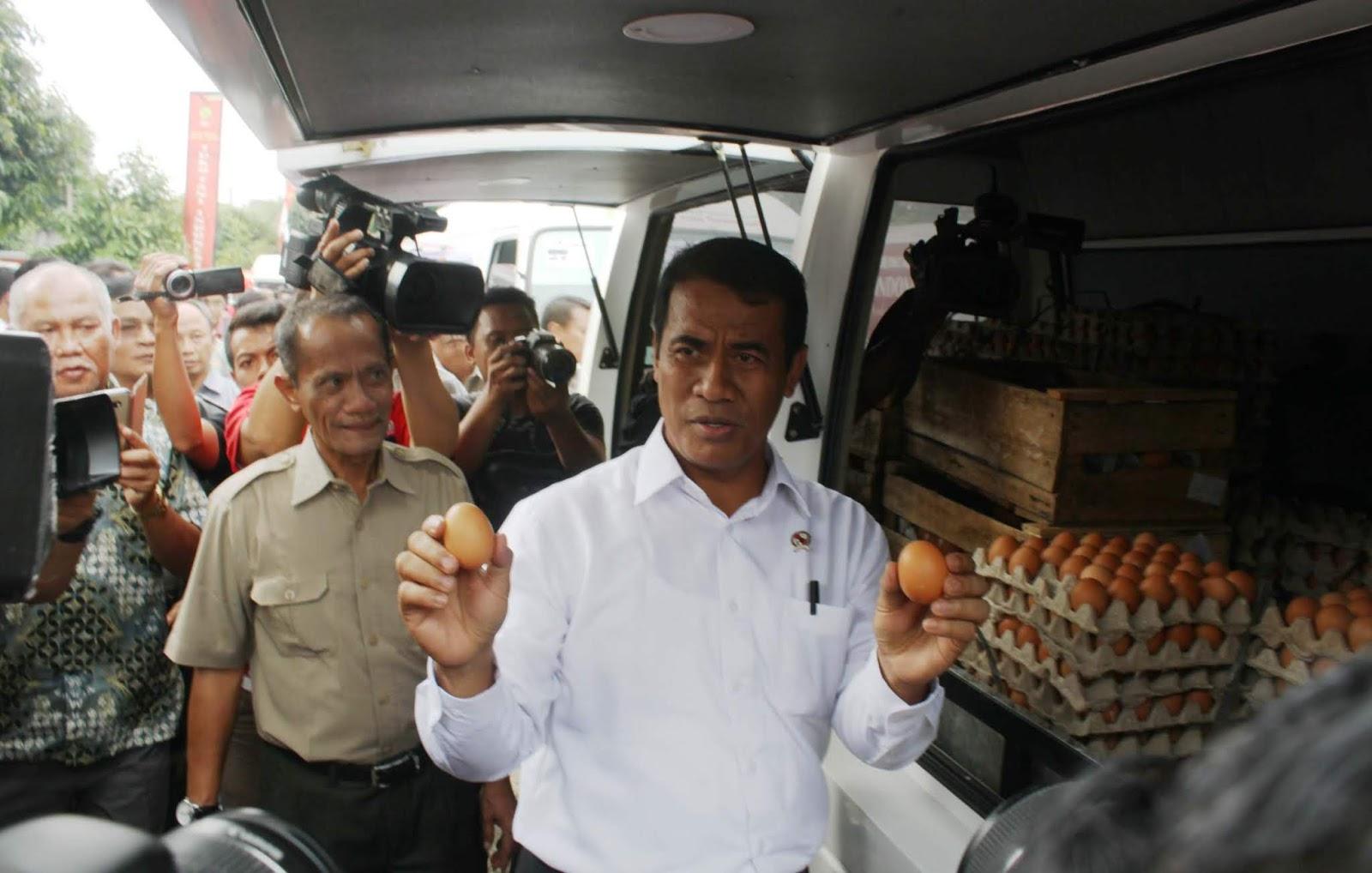 Upaya Pemerintah Turunkan Harga Telur
