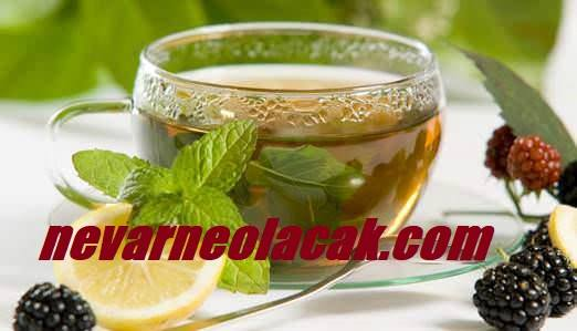 Ender Saraç Ödem Söktürücü Çay Tarifi Nasıl Yapılır?