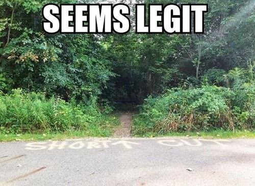 Image result for running images meme