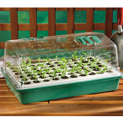 http://parkseed.com/parks-original-60-cell-bio-dome-seed-starter/p/06529/