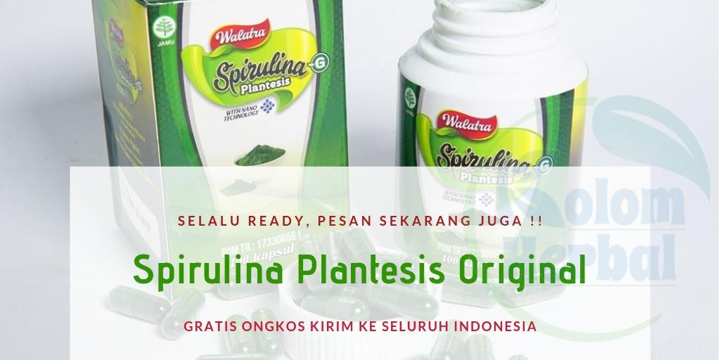 Spirulina G Plantesis Kapsul