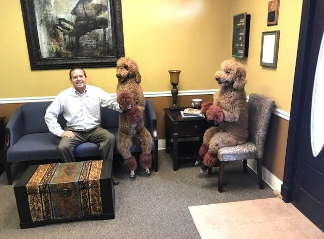 25 Breathtaking Pictures That Made Us Gasp - A client came to my dad's clinic with his poodles.