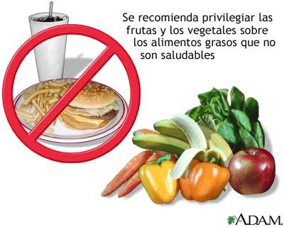 la dieta saludable completa equilibrada variada suficiente e inocua