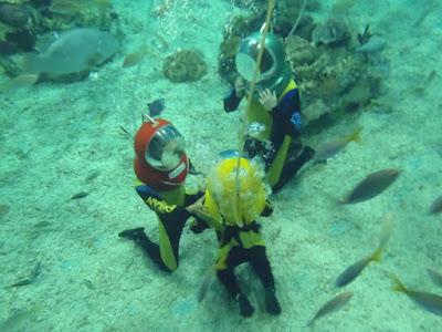Manila Ocean Park Aquanaut