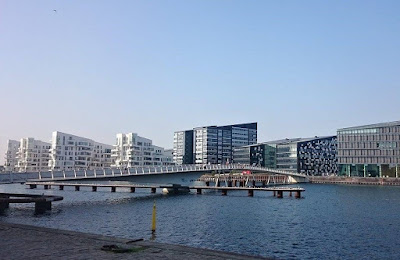 The Bicycle Snake Bridge Copenhagen