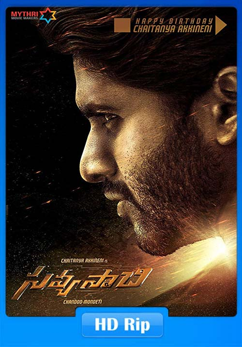 Savyasachi 2019 720p Hindi Dubbed ESubs x264 | 480p 300MB | 100MB HEVC Poster