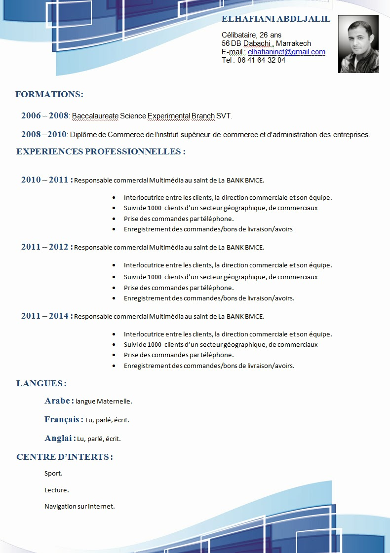 comment faire un cv  exemple curriculum vitae commercial