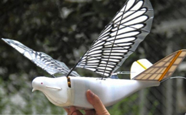 Китайці розробили шпигунів у вигляді дронів-голубів