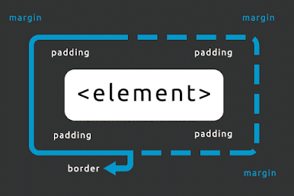 Read CSS Padding, Borders and Margin Now