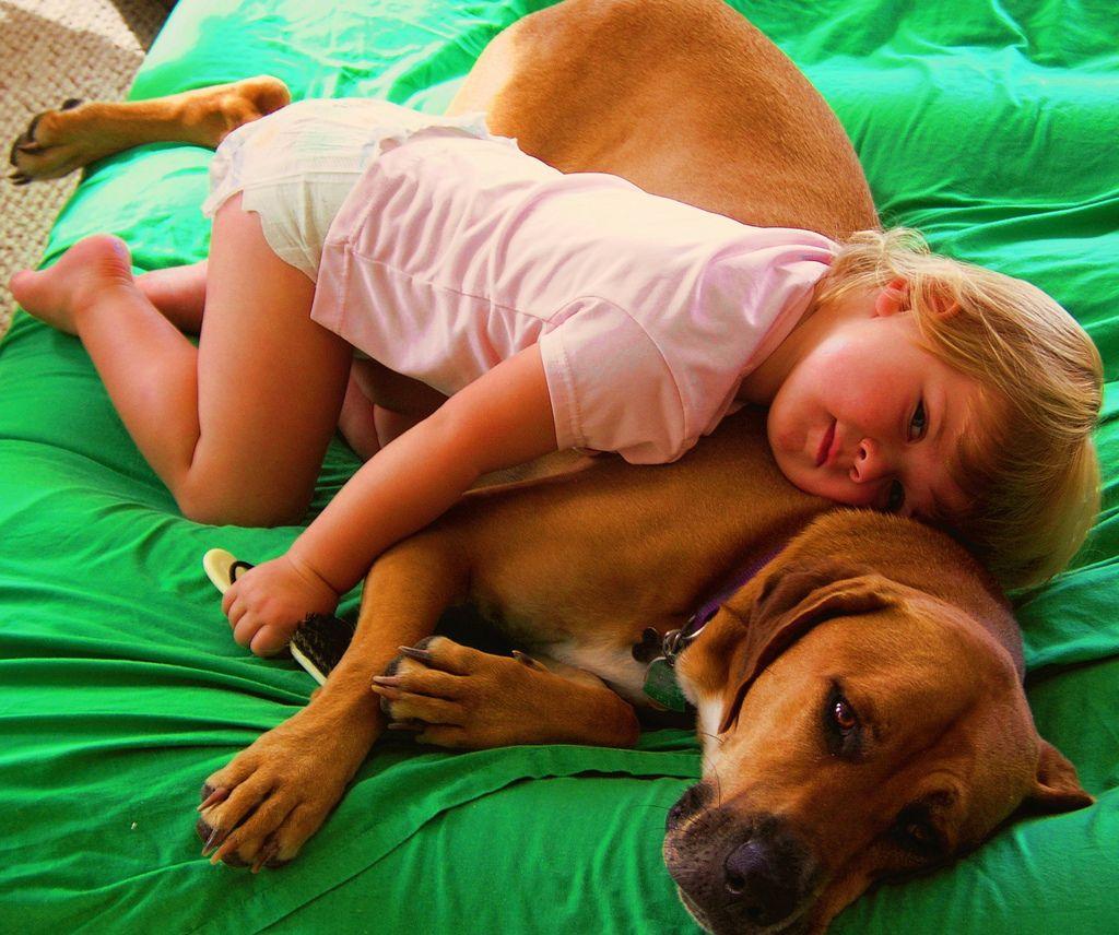 29. girl and dog