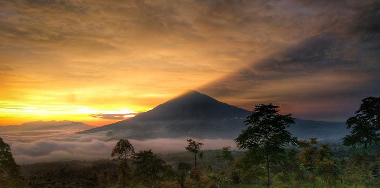 Info Lengkap Tentang Gunung Cikuray, Pendakian, Dan HTM