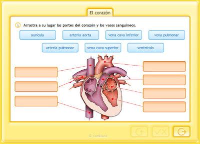 http://www.juntadeandalucia.es/averroes/centros-tic/41009470/helvia/aula/archivos/repositorio/0/194/html/recursos/la/U02/pages/recursos/143315_P25_2/es_carcasa.html