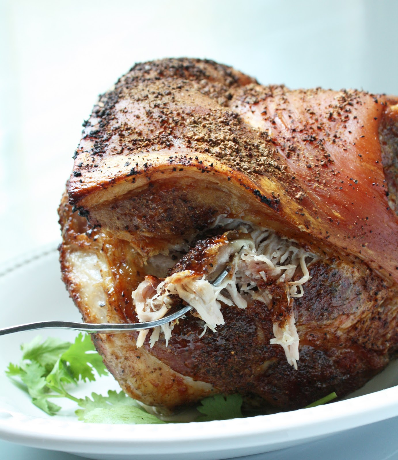 Pork Roast Recipes