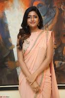 Eesha Rebba in beautiful peach saree at Darshakudu pre release ~  Exclusive Celebrities Galleries 026.JPG