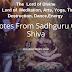 5 Quotes From Sadhguru On Shiva : The Adiyogi