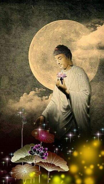 Đạo Phật Nguyên Thủy - Chuyện Kể Đạo Phật - Nguyên nhân khổ đau