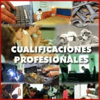 http://www.educacion.gob.es/educa/incual/ice_catalogoWeb.html