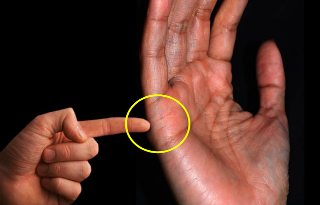 See How Many Kids You'll Have in The Future by Searching Lines Below Your Small Finger!