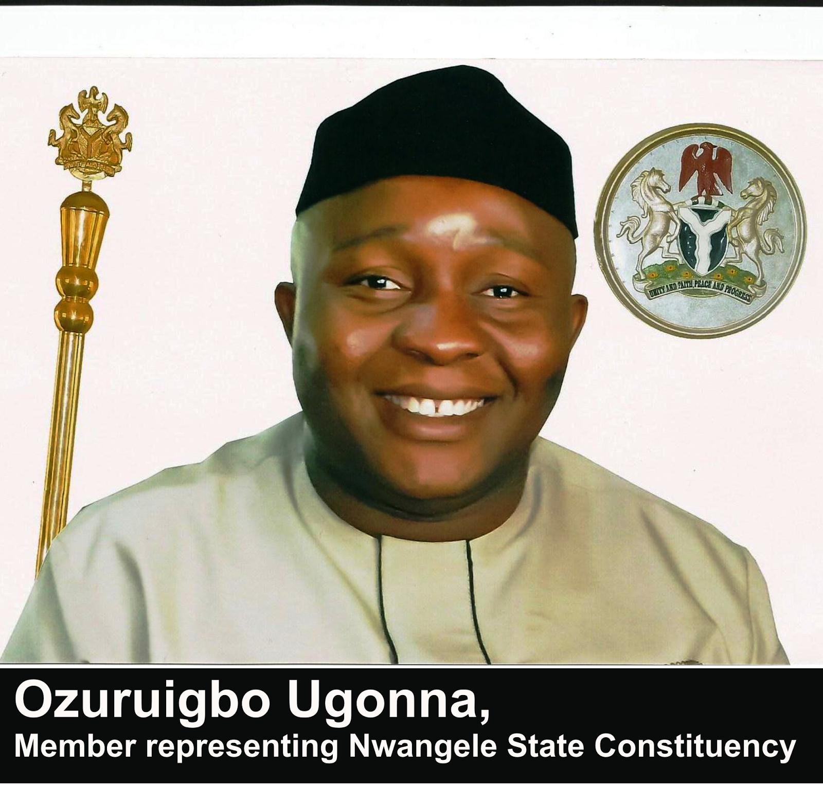 Image result for Mr. Ugonna Ozuruigbo