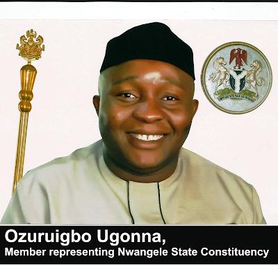 Image result for imo deputy speaker